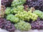 Raisin and grapes