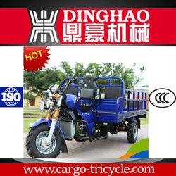 2013 New Motorized Chinese Three Wheel Motorcycle
