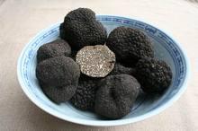 Truffle (tuber Aestivum-tuber Magnatum)