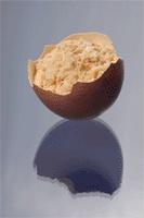 Egg Powder