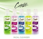 Facial Cleanser with toner