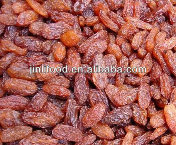 dry fruits importers red raisin best eating good quality