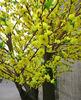 Peach BlossomTree/Artificial Plastic Tree/Decorating Garden/Home