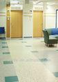 Veida laboratorio pisos