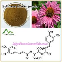 Chicoric Acid Water soluble echinacea purpurea extract 1%, 2%, 3%, 4% HPLC