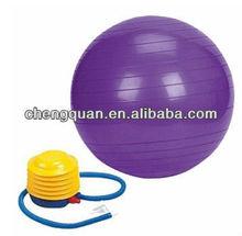 Health And Fitness 52cm Anti-burst gym ball, Purple