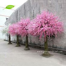 BLS014 GNW Cherry Blossom Wedding Tree