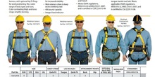 Workman Harness and Lanyard