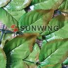 best quality !plastic leaf fence for garden (V-2)