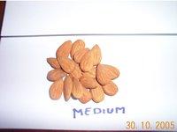 Almonds Kernel