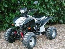 Big 200cc ATV Quad