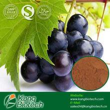 Grapeseed extract ,95% Oligomeric Proantho Cyanidins/ Polyphenols,Vitis vinifera