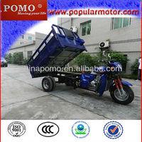 Hot Selling Popular Petrol 2013 New Cargo Cheap Three Wheel 250CC Trimoto