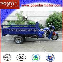 Hot Selling Popular Petrol 2013 New Cargo Cheap 3 Wheel Motorcycle 250CC