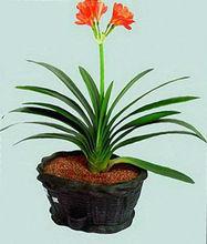 decorative artificial potting soil