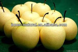 100% Natural snow pears juice powder