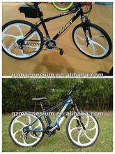 electric bike 3 wheel