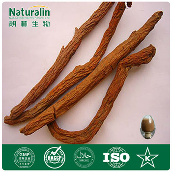 GMP Factory ISO Certificate Best Quality 100%Natural Danshen Root Extract Triterpene glycosides (HPLC)