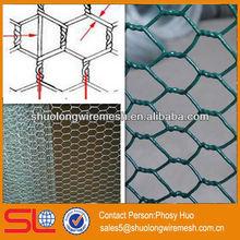 Hot sale!Anping Hexagonal wire mesh,diamond mesh fence,triple net torsion