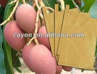 mango growing bag