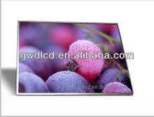 New Products on China Market Laptop Lcd Glossy LTN170CT10 Small VGA Monitor 1920*1200