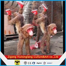 Educational Animal Models Simulation Monkeys Models for Kids