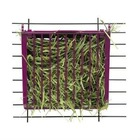 Super Pet Rabbit Hay Buffet Feeder with Snap-Lock Lid