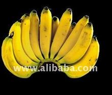Fresh Bananas Fruit
