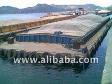 Hatch Barge