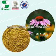 Echinacea extract of Polyphenol 4% UV cichoric acid 1% HPLC can be enhance immunity