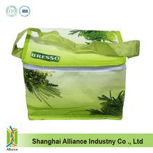 PP non-woven lamination cooler bag