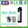 e-bike lifepo4 battery 36v 16ah for automobile high capacity