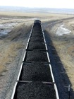 Steam Coal / Thermal Coal 4300/4900/5500