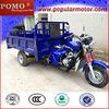 2013 Popular Chinese Gasoline Hot Cheap 250CC Cargo 3 Wheel Motor Trike