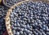 Acai Berry Juice (Amazon Berry Product)