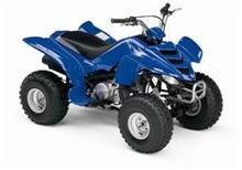 2007 ATV Motor Trx90ex