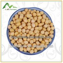 Certificado ISO extrato de soja / isoflavonas de soja 60% HPLC / estrogênio função