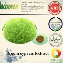 Belvedere Fruit Extract /broom cypress fruit
