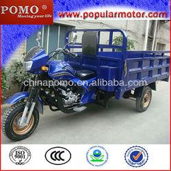 Hot Top Popular Gasoline 2013 Chinese Cheap 250CC Cargo Three Wheel Motorcycle Trike