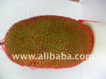 fresh whole jackfruit