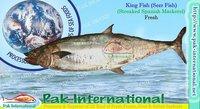 King Fish (Streaked spanish mackerel)