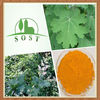 Natural Macleaya Cordata Extract Powder Detox