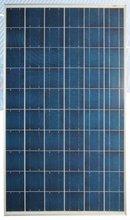 Solar Module Polycrystalline