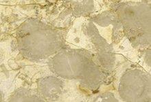 Brecchia Marble