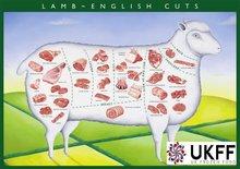 Halal Lamb / Halal Mutton
