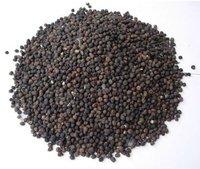 Kapok Seeds