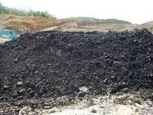 Steam Coal GCV 6500-6300