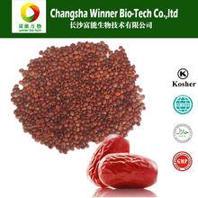 Jujuboside spina date seed extract semen ziziphi spinosae P.E.