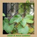 Alta calidad decorativo enrejado de uva