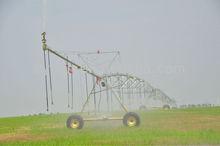 Irrigador enema